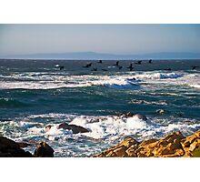 Cormorants on the Wing, Pebble Beach Photographic Print