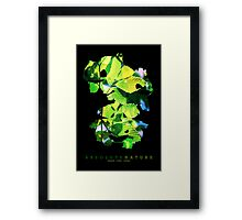 Absolute Nature Framed Print