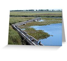 The Boardwalk At Point Pelee Greeting Card