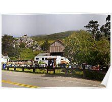 Rural Post Office, Muir Beach, California Poster