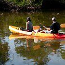 Kayak in the wilderness by Rosalie Scanlon