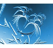 Love of Winter Photographic Print