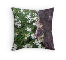 zen garden goiano Throw Pillow