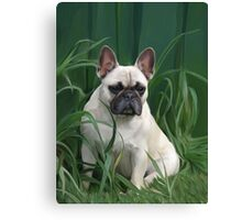 Rosey in the Grass Canvas Print