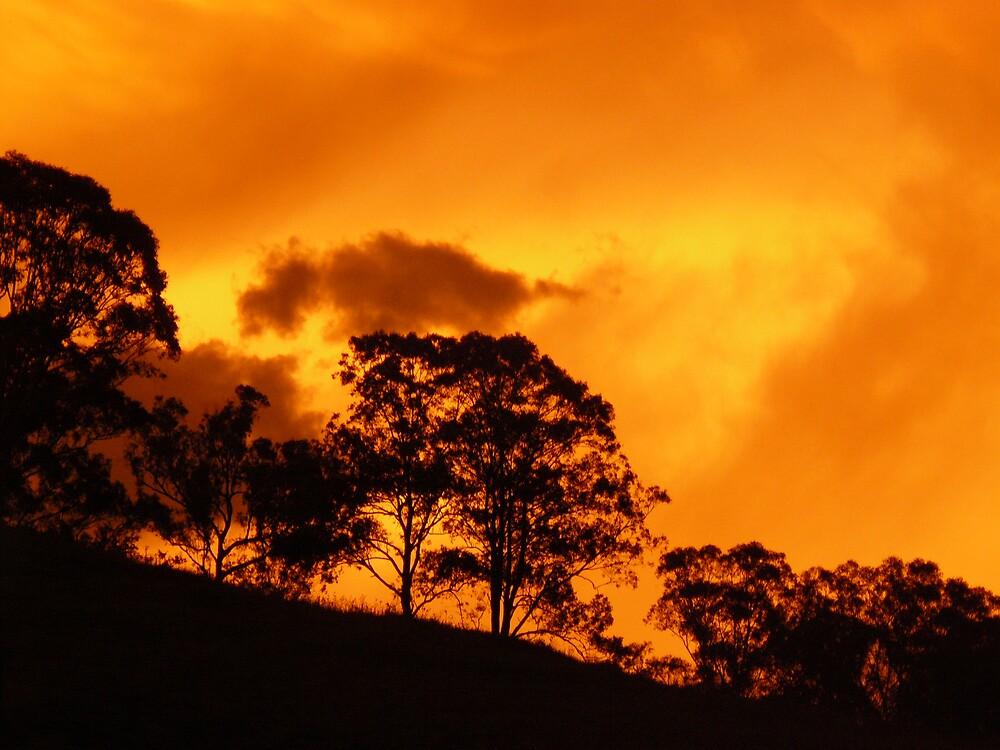 Heatwave Sunset, Krambach, NSW, Australia. by Margaret Stockdale
