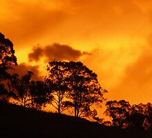 Heatwave Sunset, Krambach, NSW, Australia. by Margaret Stockdale