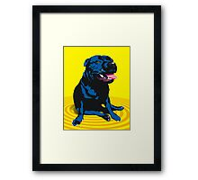 staffy / PBT Framed Print