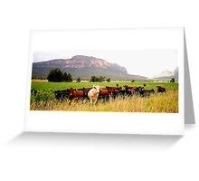 Having Fun Wish You Were - Capertee Valley  Greeting Card