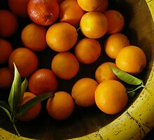 Oranges by lucindadodds