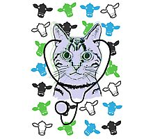 Doctor Kitty Cat Photographic Print