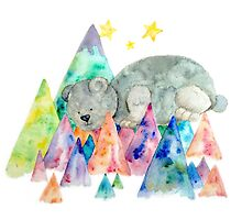 The Colour Mountains and the Teddy Bear by Clare-Kelly