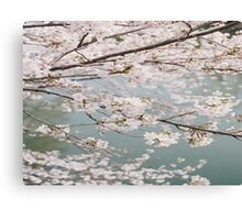 The Flower That Blooms In Adversity Is The Rarest And Most Beautiful Of All Canvas Print