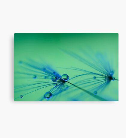 Aquatic Dreams Canvas Print