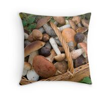 musrooms (Boletus scaber, aurantiacus, edulis).  Throw Pillow