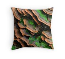 mushrooms (Trichaptum biforme) Throw Pillow