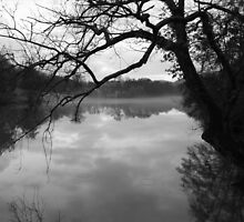 Witley Lake by Spencer Trickett