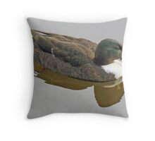 A Cayuga Mallard Drake Throw Pillow