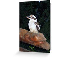 Posing Kookaburra Greeting Card