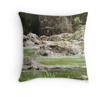Obi Obi Creek Throw Pillow
