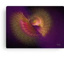 'Bird of Paradise Spiral' Canvas Print