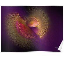 'Bird of Paradise Spiral' Poster