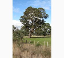 Gum tree near Penshurst with typical scrappy wire fence Unisex T-Shirt