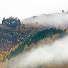 Mist at Killiecrankie by johnord