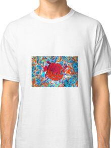 Toddler Turtle Red Classic T-Shirt