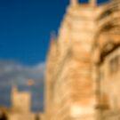La Seu - Palma de Mallorcas 12th Century Cathedral by Philip  Rogan