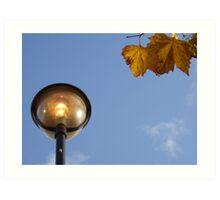 Leaves & Light Art Print