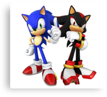 Sonic and Shadow - Sonic the Hedgehog Canvas Print