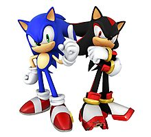 Sonic and Shadow the Hedgehogs Photographic Print