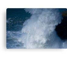 Bigger Splash Canvas Print