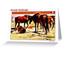 Fresh Arrivals Greeting Card