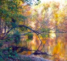 Fall at the Lake Painted by boogboog2