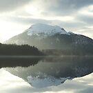Loch Laggan by lins