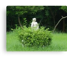 Lady With Green Canvas Print