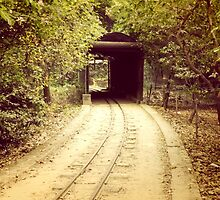 Tunnel & track by ashishlko11
