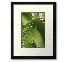 The Green Light #2 Framed Print