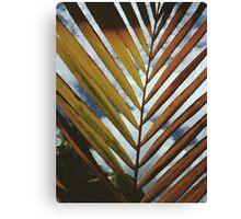 Palm Leaf v.2 Canvas Print