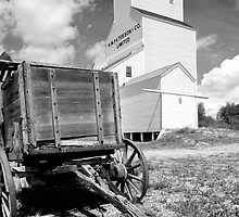 Grain Elevator 2 by bpottorff