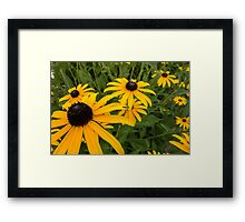 Green insect on yellow flower Framed Print