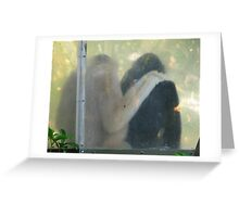 Friends at Adelaide Zoo Greeting Card