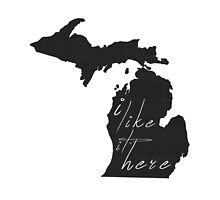 I Like it Here Michigan by surgedesigns