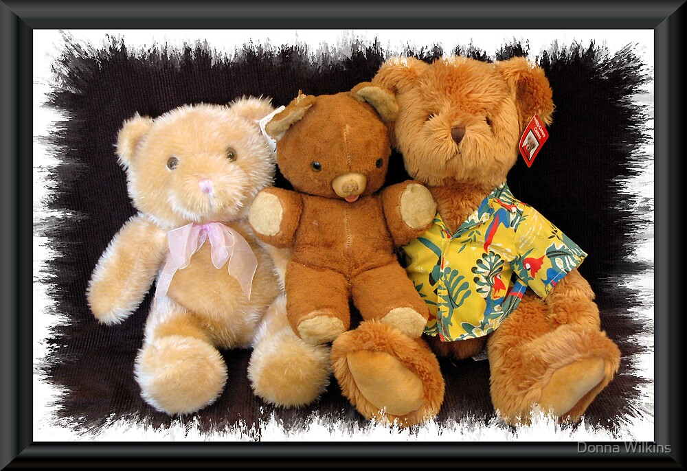 The Three Teddies by Donna Adamski