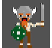 8-bit guys, Viking Photographic Print