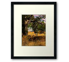 Wimmera Plains Framed Print