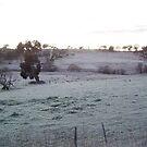 Frosty Winter Morning Near Boorowa, NSW by Arthur Richardson