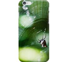 A Spider's Web iPhone Case/Skin