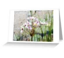Nature's Gift Greeting Card